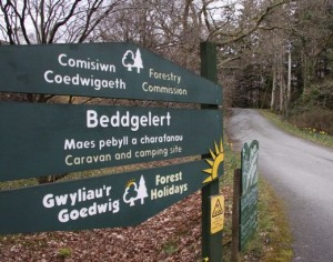 Controversial 'Center Parc style' Snowdonia forest chalet development set to get the go-ahead
